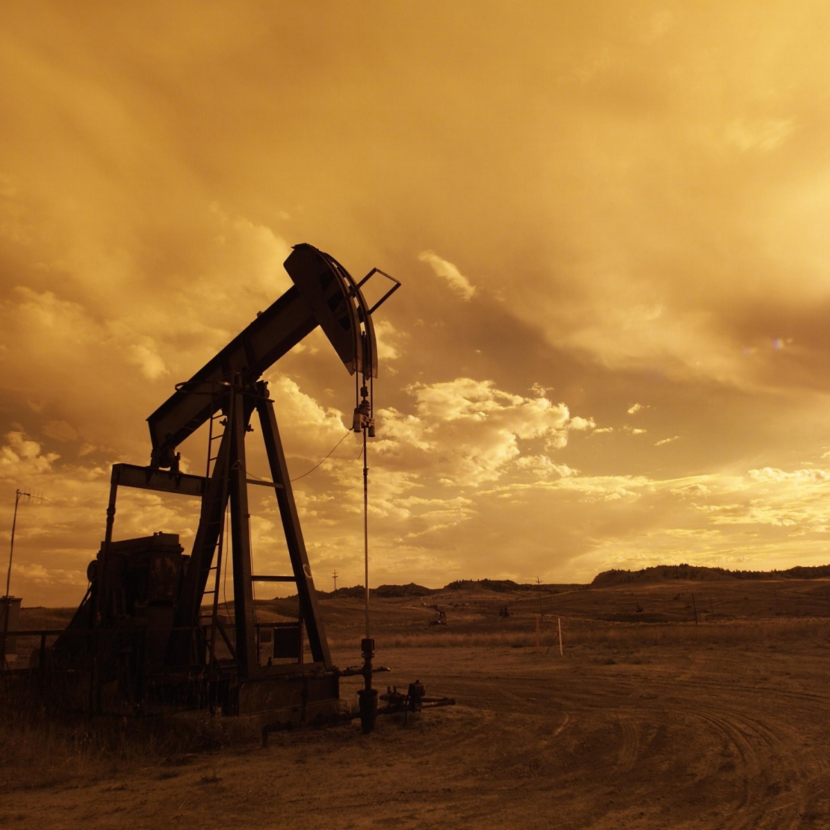 A 100% natural oil well